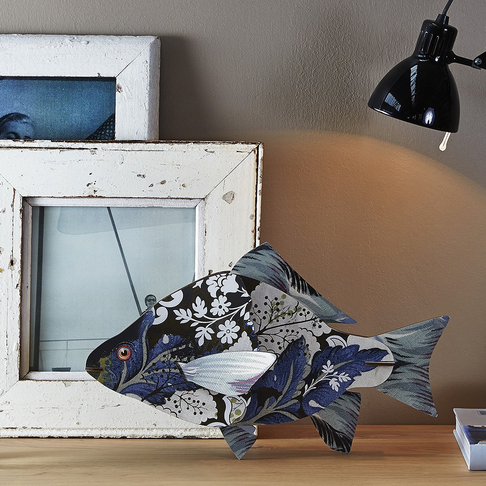 Decorative Fishes
